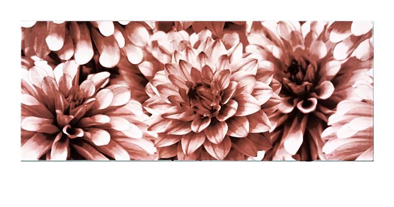 BUGI PINK INSERTO FLOWER 20x50-009-2014-06-09 _ 15_59_40-72
